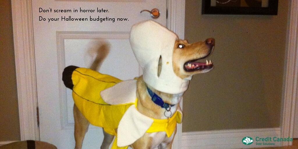 Halloween budget