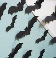 cc bats2-287605-edited