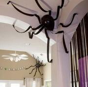 cc spider balloon-523097-edited